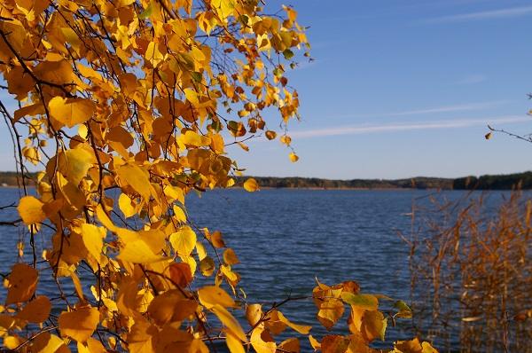 5 tapaa remontoida mökkiä syksyllä ja talvella