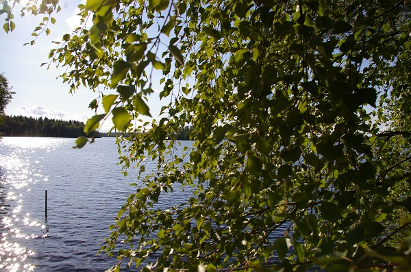 summer finland 600p